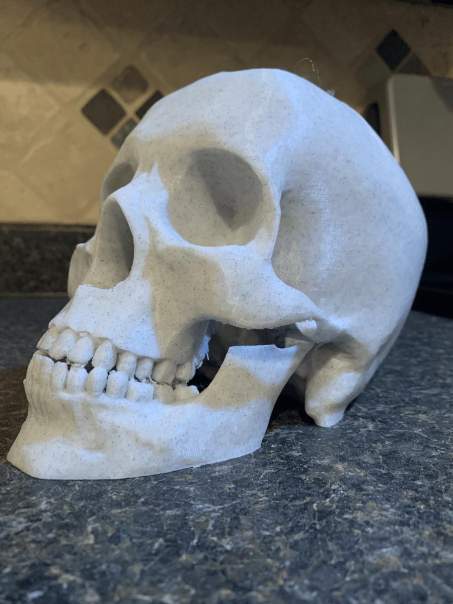 Skull desk organizer printed in marble PLA